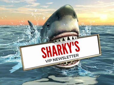 Sharky Newsletter